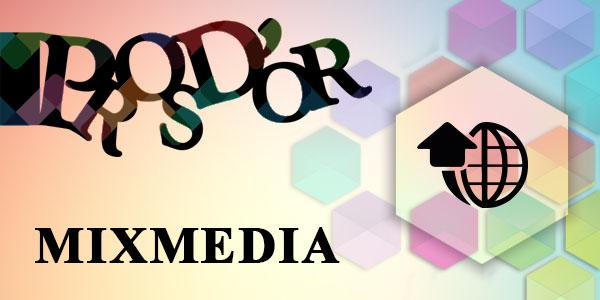 Pros d'or 2017 : Fiche d'inscription catégorie MIX MEDIA