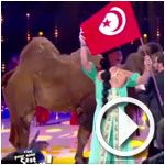 Près de 1 millions de français ont suivi l'opération Tunisie sur C8
