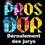 Jury pour les Pros d'Or 2012