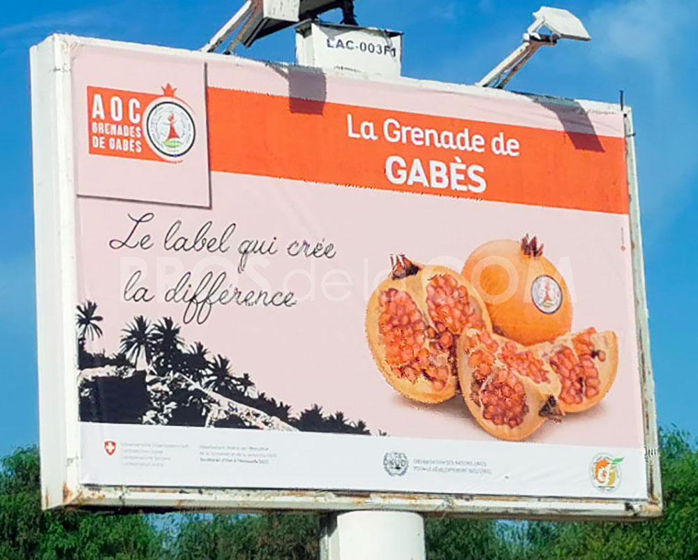 Campagne La grenade de Gabès - Octobre 2021