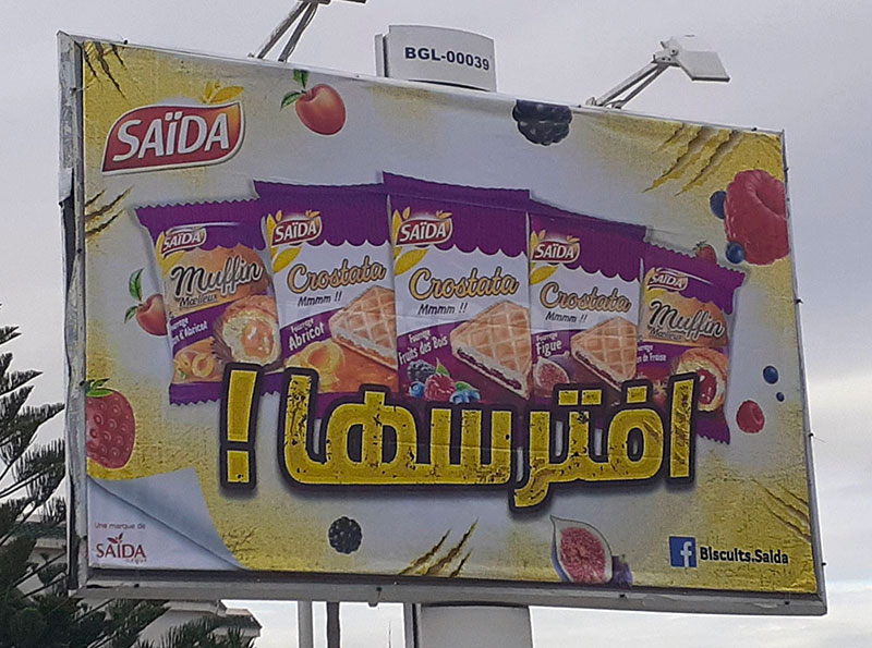 Campagne Saida - Novembre 2019