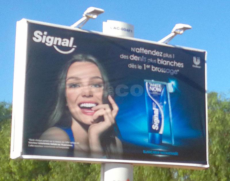 Campagne Signal Décembre 2018