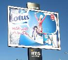 Campagne LOTUS - Mars 2017